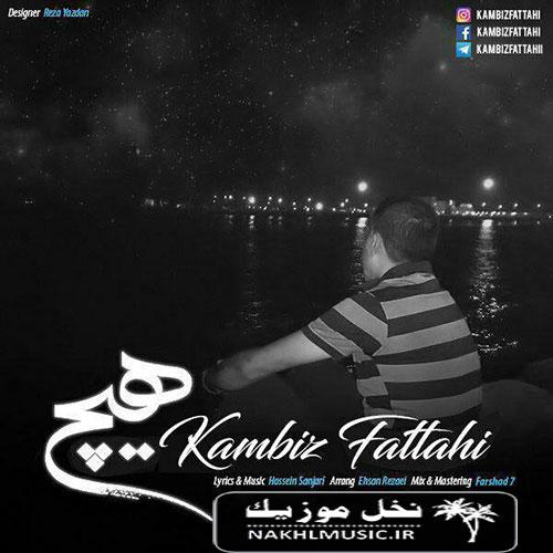 آهنگ جدید و بسیار زیبا و شنیدنی از کامبیز فتاحی بنام هیچ