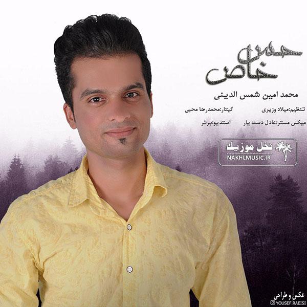 محمدامین شمس الدینی - حس خاص
